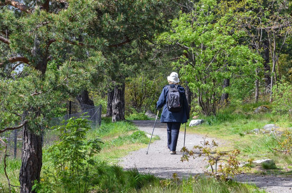 Hyresgäst naturområde i Larsberg